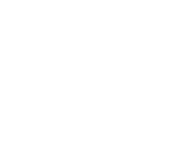 Belize Hotel Association Footer Logo
