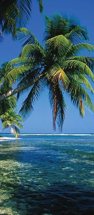 belize-quick-facts-island.jpg